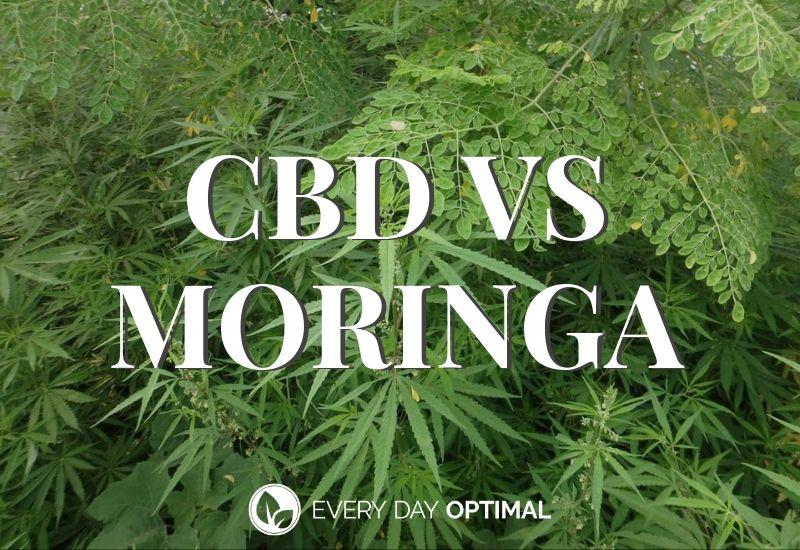 CBD vs Moringa