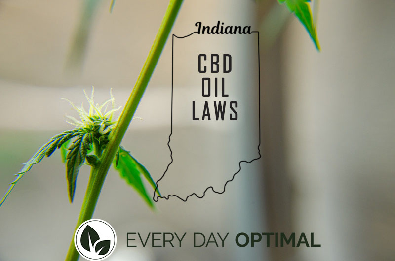 CBD Oil Indiana